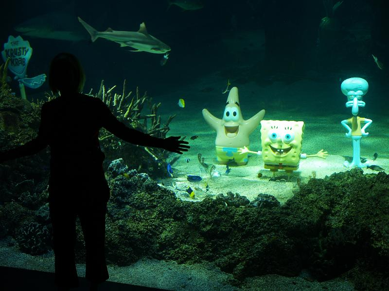 Trademark g 39 s photos travels australia june 2009 sydney aquarium spongebob horror scares christy